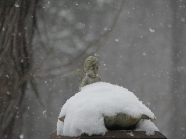 snow on a bird bath