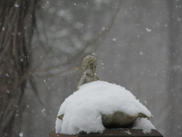 snow on a bird bath