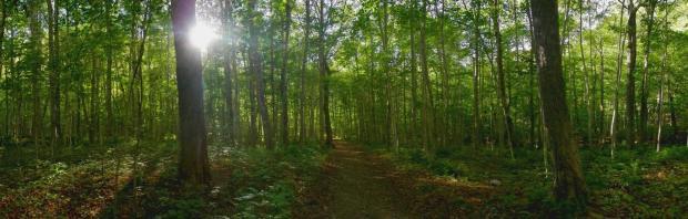 Nova Scotia national park hiking trail