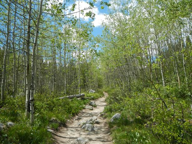Grand Teton National Park Taggart Lake trail